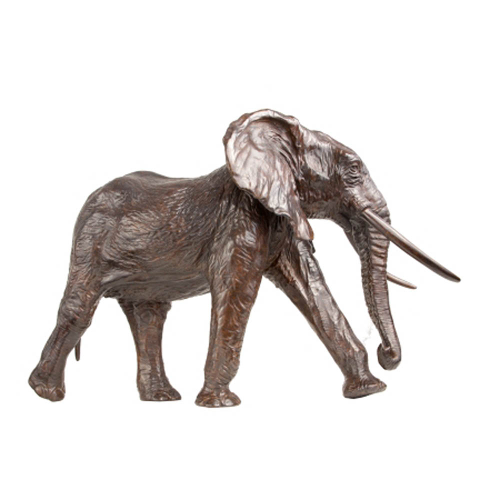 Éléphant – D. Colcombet