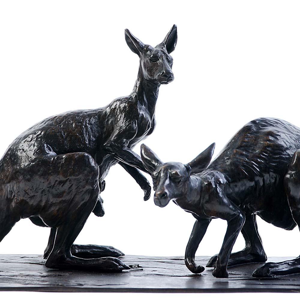Kangourous – D. Colcombet