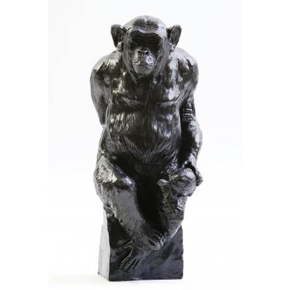 Chimpanzé – D. Colcombet